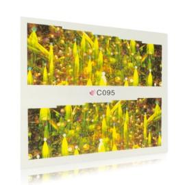Fantasy sticker - C095