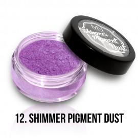 Shimmer Pigment Dust - 12 - 2g